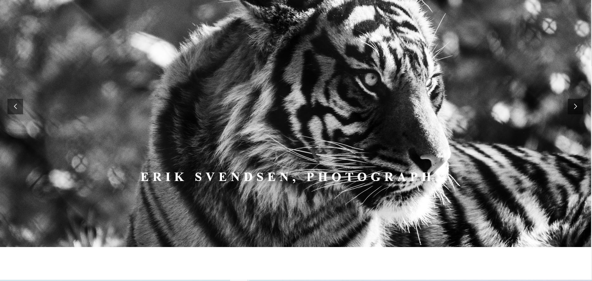 Erik Svendsen website designed by JH Web Design